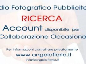 ricerca account